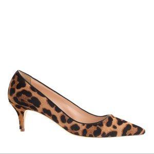 J. Crew collection Dulci Kitten Heels Leopard